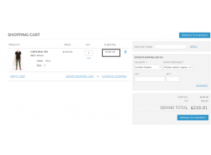 Frontend view Cart Page Simple Price