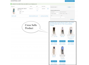 Frontend view cross-sells product