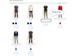 Frontend view Simple Price